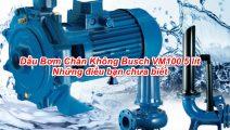 Dầu Bơm Chân Không Busch VM100 5 lít: Những điều bạn chưa biết